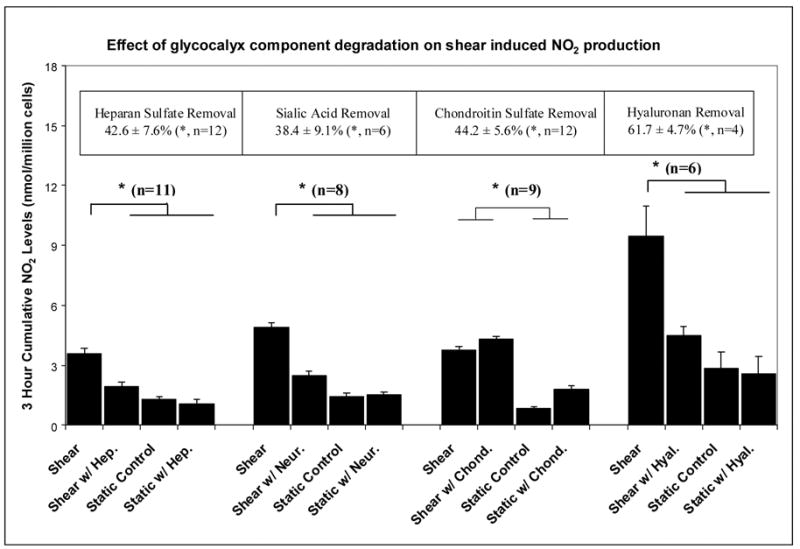 """Figure 1. Enzymatic removal of critical GAGs in the glycocalyx (heparin sulfate, sialic acid, chondroitin sulfate, hyaluranon) and the resulting change in shear-induced NO2 levels. (Pahakis 2007)"""" width=""""600"""" height=""""412"""" /> Figure 1. Enzymatic removal of critical GAGs in the glycocalyx (heparin sulfate, sialic acid, chondroitin sulfate, hyaluranon) and the resulting change in shear-induced NO2 levels. (Pahakis 2007)"""